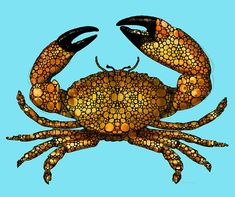Stone Rock'd Crab by Sharon Cummings