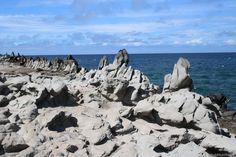 Maui: Dragons's Teeth: hier findest du viele Insider Tipps und einen ausführlichen Reisebericht auf http://www.worldwideweindl.com/maui-hawaii/