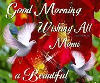 Good Morning Wishing All Moms A Beautiful Mothers Day Happy Mothers Day Images Happy Mother Day Quotes Happy Mothers Day Wishes