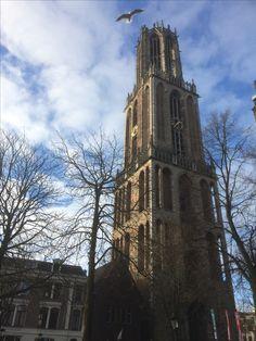 De dom Utrecht netherlands.