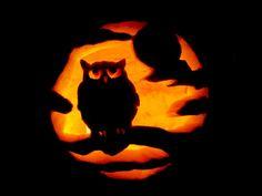 #owl #pumpkin #halloween