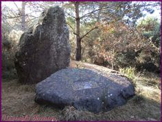 https://flic.kr/p/MjSrzq | Broceliande - J2 dolmen des pierres Gouffier village folle-pensée
