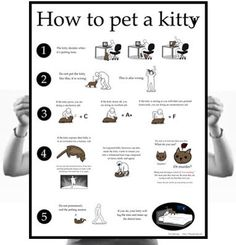 The oatmeal - how to pet a kitty