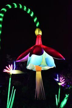 Leuchter – Just another WordPress site Lantern Festival, Festival Lights, Paper Light, Light Art, Cardboard Sculpture, Festivals Around The World, Chinese Lanterns, Light Project, Light Installation