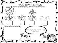Top 40 Examples for Handmade Paper Events - Everything About Kindergarten Kindergarten Lessons, Science For Kids, Olay, Pre School, Preschool Activities, Reggio Emilia, Worksheets, Homeschool, Math