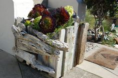 Make a simple driftwood planter for a natural look.