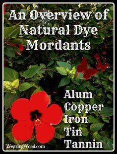 If you've wondered what mordants do for natural dyes, here is a quick overview of the top Natural Dye Mordants.