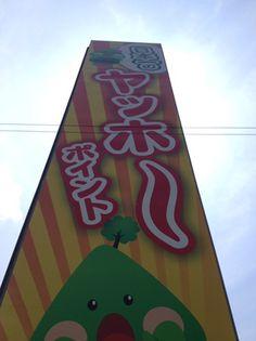 一度は体験して欲しい→ヤッホー ポイント In 和歌山県日高川町
