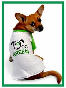 """10 Tips to """"Green"""" Your Veterinary Clinic"""