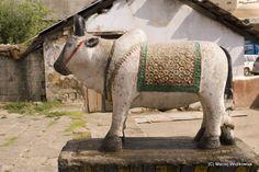 Nandi, Shiva bull behind Mandi temple