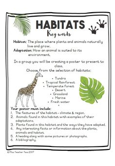 Science Worksheets, Science Lessons, Science Activities, Life Science, Science And Nature, Science Projects, Ecosystems Projects, Science Lesson Plans, Science Classroom
