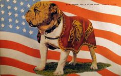 "Sgt. James Jolly Plum ""Duffy"" - First Mascot of Marine Corps Base, San Diego."