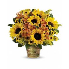 Send sunshine! Nothing brightens their day like a warm mix of golden sunflowers and orange alstroemeria. A unique gift they 'll never forget, this sunshine bright bouquet is hand-delivered in our exclusive ceramic cachepot-a magnificent, multi-glazed piece made in Portugal. This sunny bouquet is made up of orange alstroemeria, small yellow sunflowers, yellow Viking daisy spray chrysanthemums, solidago and lemon leaf.
