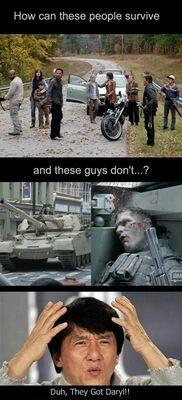 Duh, they've got Daryl Dixon!