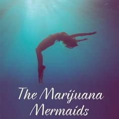 A really fun read. is it still available on swoonreads dot com? For free? Island Life, Amelia, Authors, Indie, Mermaid, Reading, Fun, Movies, Movie Posters