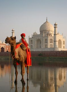 Camel boy crossing the Yamuna River across the Taj Mahal, Agra, India. Photo by Andre Roberge.