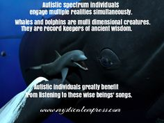 #autism #starseed #whale #dolphin Psychic Readings, Dolphins, Mermaids, Autism, Mystic, Astrology, Whale, Insight, Coaching