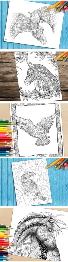 What colors would you use to color these beautiful animals? Download coloring pages for adults here https://www.etsy.com/shop/SelahWorksArt?ref=hdr_shop_menu  Repin This Pin and You Will Receive 15% Off Any Coloring book or Page on our Etsy Store