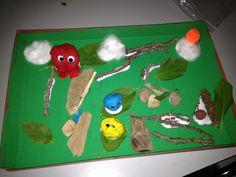 Frog habitat diorama (grade 1)