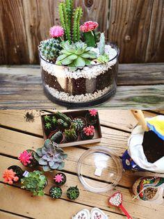 Una forma ingeniosa y original para crear un pequeño jardín con cactus. Tal y como ves en las imágenes, es muy simple y con un resultado muy decorativo. Vía abeatifulmess …