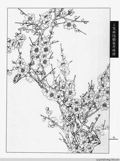 工笔画白描---梅花 - 水韵清香 - 水韵清香 Pattern Coloring Pages, Colouring Pages, Cherry Blossom Art, Blossom Flower, All Seeing Eye Tattoo, Asian Flowers, Pyrography Patterns, Blue Tattoo, Colored Pencil Techniques