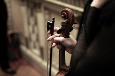 Learn to play the violin.