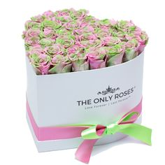 Pink and Green Preserved Roses | Heart White Huggy Rose Box
