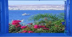 "Welcome to the ""Villa Iolanthe in Paros, Greece. Paros Greece, Luxury Villa, Building A House, Greek, Island, City, Luxury Condo, Build House, Islands"