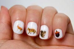 These little transfers nail decals are made from real pictures of woodland creatures. There are 42 water transfers that blend in perfectly with clear, pale or white nail polish. #woodlandcreatures #bears #foxes #fox #foxy #squirrel #acorn #naildecals #nails #obscuraoutfitters #cute #nailideas