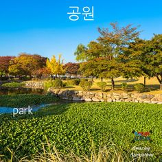 #Korean word associations: I ring  (one)  (gong) at the (park). #korean_language #learn_korean  Repin if you love the 공원! ^^