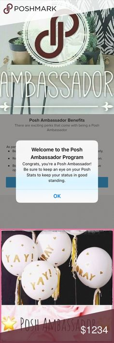 I'm a Poshmark Ambassador! I'm now a Poshmark Ambassador, just in time for the holidays! Keep an eye out for discounts this season, I'll be clearing out my closet for winter break 😊 Other