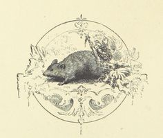 Image from 'Woodland Romances; or, Fables and Fancies', 002419452 Author: MATÉAUX, Clara L.   Page: 112   Year: 1877   Place: L...