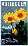 Adelboden 1937 Adelboden, Plants, Switzerland, Event Posters, Flora, Plant, Planting