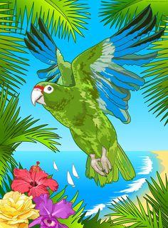 Puerto Rican Parrot Digital Art by Erasmo Hernandez