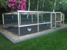 A decent sized chicken run that is covered for the desert.