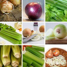 Los mejores alimentos depurativos son el apio y la cebolla. La depuración es necesaria para eliminar líquidos y sustancias perjudiciales para el organismo.