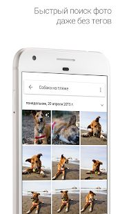 Скриншот Google Play, Identify Plant, Photo Editing Tools, Photo Today, Dog Beach, Getting Things Done, Photo Book, Your Photos, Photo And Video