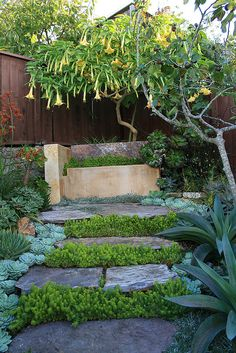 A shaded bench with a Golden Gate View by anniesannuals, via Flickr