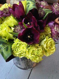 Burgundy and green floral design.