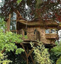 Eco-friendly luxury tree houses by Blue Forest