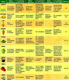 Таблицы подкормок овощей. » Женский Мир Summer House Garden, Home And Garden, Urban Farming, Farm Gardens, Jpg, Small Farm, Gardening Tips, Vegetable Garden, Fruit