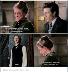 The Marauders and Mcgonagall. She totally knew about their transformation. So did Dumbledore. They just looked away bc it was the right thing to do Saga Harry Potter, James Potter, Harry Potter Universal, Harry Potter Fandom, Harry Potter World, Harry Potter Memes, Hogwarts, Slytherin, Yer A Wizard Harry