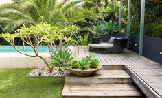 Love the oversized step and concrete planter