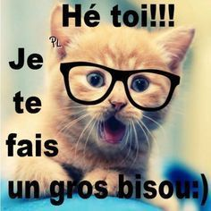Je te fais un gros bisous :) - nat esco - BildersPin Emoticons Text, Funny Emoticons, Smileys, Animals And Pets, Cute Animals, Thinking Of You Quotes, Tu Me Manques, Cat Dog, Kitten Cat