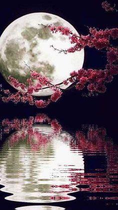 Nuestro sueño nuestro futuro lo que somos oscuro como la noche o claro como el día #comenta prefieres el dia o la noche