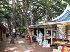The International Market Place is an upscale shopping complex in Waikiki Hawaii. It was once a popular outdoor market. Hawaii Honeymoon, Hawaii Vacation, Vacation Places, Hawaii Pictures, Hawaii Pics, Super Pictures, Visit Hawaii, Hawaii Homes, Vintage Hawaii
