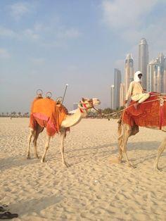 Tourist in Dubai
