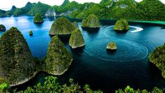Among the wonderful Raja Ampat Islands, Waigeo is the largest of the archipelago's four main islands. Waigeo is also known as Amberi, or Waigiu, located in the West Papua province near the town of Sorong Monuments, Raja Ampat Islands, West Papua, Exotic Beaches, Joko, Travel Alone, Archipelago, Beach Trip, Beach Travel