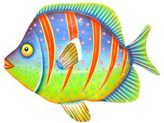 Goldfish - Pets - Picasa Web Albums