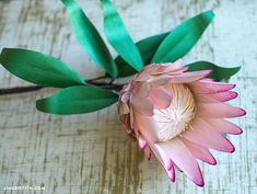 Paper Protea Flower - Lia Griffith Foam Cutter, Protea Flower, Paper Crafts, Diy Crafts, Metallic Paper, Paper Flowers Diy, Marker Art, Photo Tutorial, Flower Designs